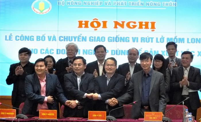 Việt Nam lần đầu 'ra mắt' giống vacxin lở mồm long móng